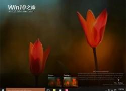 10064-screenshots007
