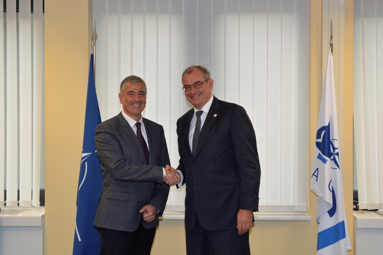 NATO – neuer Partner für Microsoft's Government Security Program (GSP)