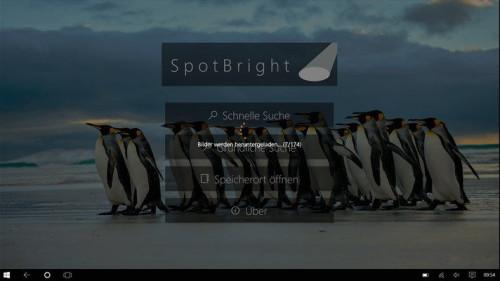 SpotBright-1