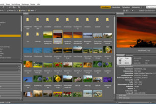 Adobe Bridge – Kurz angeschaut