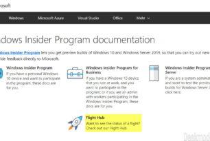 Flight Hub für die Windows 10 Insider wurde nun in die docs microsoft Seiten verschoben