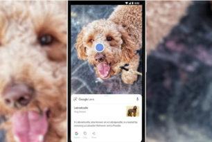 "Google installiert ""Google Lens"" auf Android Smartphones"