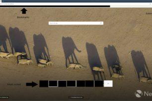 Microsoft Edge (Chromium) in den ersten Bildern inklusive Erweiterungen