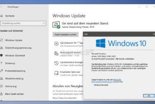 KB4505903 Windows 10 1903 18362.263 (Manueller Download) + KB4508433 als SSU