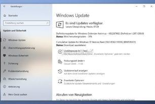 Windows 10 1909 18362.10006 (Manueller Download) im Slow Ring