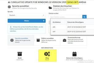 Die ersten zwei ISOs im Retail Ring gesichtet – Windows 10 1909