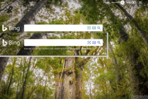 Das neue Bing Logo wird ausgerollt