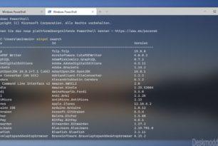 Windows Package Manager (WinGet) 0.2.2521 steht zum Download bereit