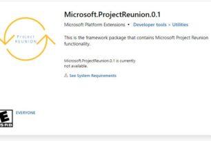 Project Reunion als Windows 10 App im Microsoft Store