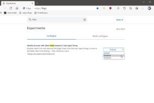 """Microsoft Edge startet den Test von """"Client Hints"""" statt der """"User-Agent-String"""" Identifizierung"""