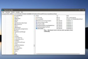 Windows 10 Registry Editor: Strg + Rücktaste löscht nun ganze Wörter