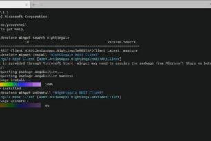 WinGet 0.3.11201 mit neuen Funktionen – Version 1.0 wird bald kommen