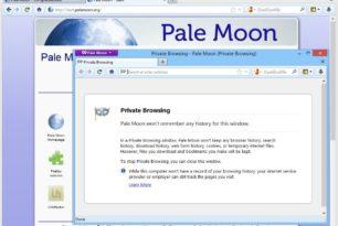 Pale Moon 29.2.0 unterstützt keine Legacy Firefox Erweiterungen mehr