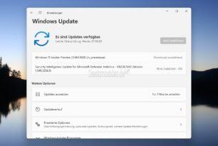 """Windows 11 22463 im Dev-Kanal als """"Wartungsupdate"""" (Inklusive Workaround für """"alte"""" PCs)"""