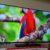 Nokia Android TV im Test: Schnelles System, gutes Bild, verschwommene Menüs