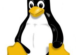 Secure Boot umgehen für alle Linux-Distributionen
