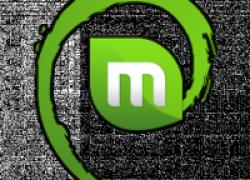 L̦sung: LMDE РUpdate Pack 5 erschienen РXServer erkennt nVidia-glx Treiber nicht mehr!