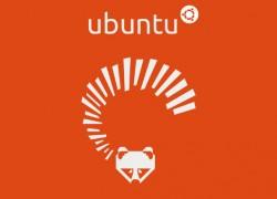 Ubuntu Р13.04 Raring Ringtail ver̦ffentlicht